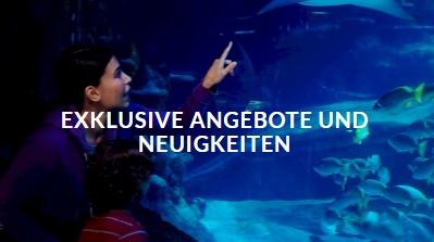 Sea Life Gutscheine Sea Life Rabatte 32 Kostenlose Rabatt