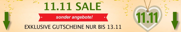 11-11-singles-day-herbst-sale